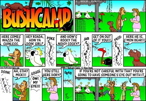 Bushcamp Comics