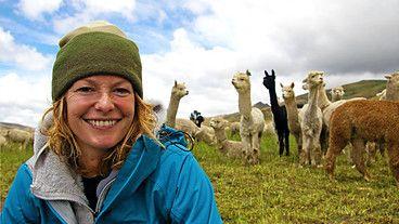 BBC Two - Wild Shepherdess with Kate Humble