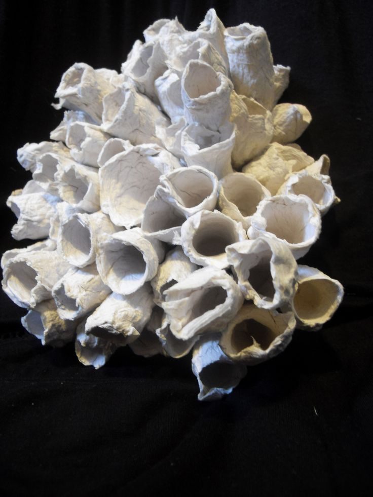 toilet tissue coral sculpture | Flickr - Photo Sharing!
