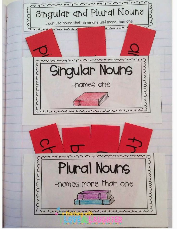 First Grade Interactive Notebooks