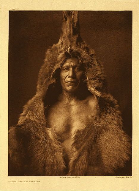 "Bear's Belly – Arikara, 1908. Photogravure. Curtis Caption: ""A member of the medicine fraternity, wrapped in his sacred bear-skin. A biographical sketch of this subject is given in Volume V, page 178."""