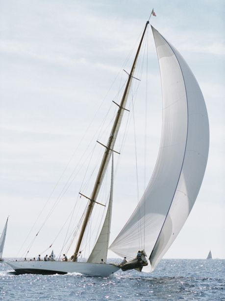 sailboat (via thesteward)