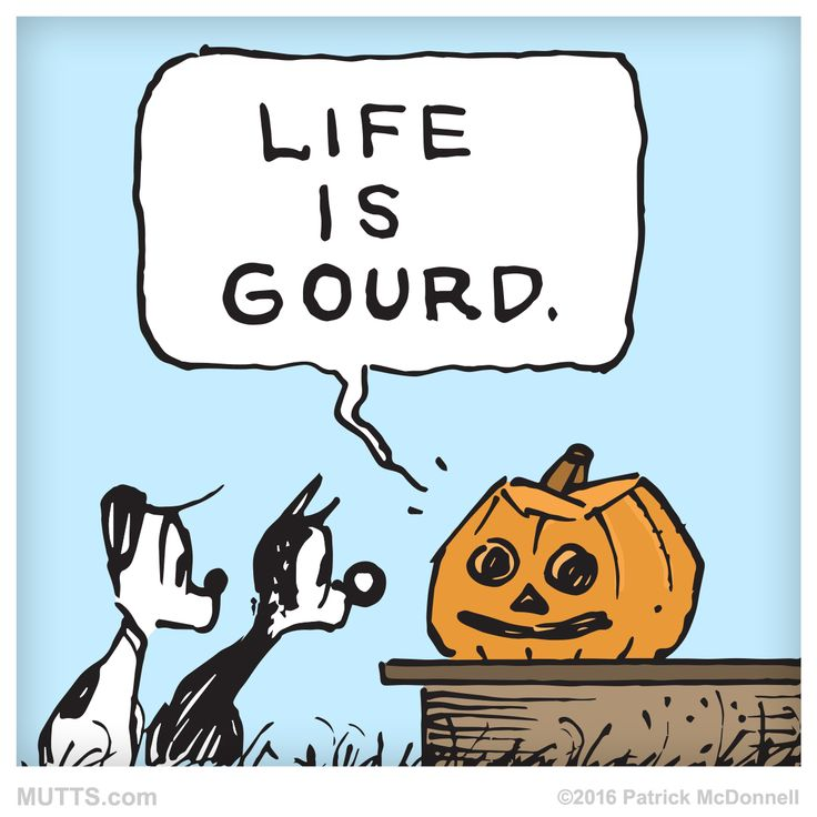 Hope you're having a gourd #Sunday. ;)  #MUTTSofinstagram #Halloween #October #pun #punstagram #weekend