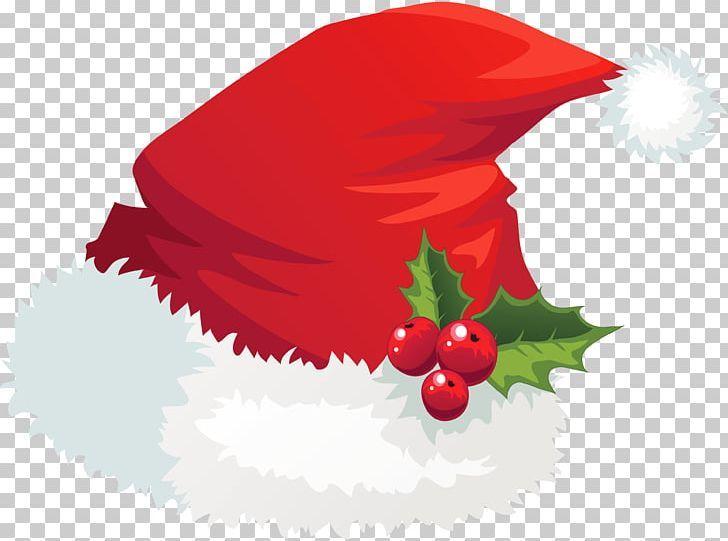 Christmas Santa Claus Hat Mistletoe Png Christmas Hat Holidays Natal