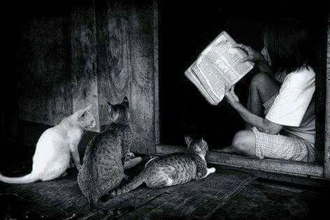 """""""İyi dostlar ,iyi kitaplar ve bir de huzurlu bir vicdan ;işte ideal hayat."""" - Mark Twain"""
