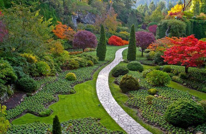 Bland de vackraste trädgårdarna i världen samsas skogsträdgårdar med spartanska zenträdgårdar och magnifika slottsparker.