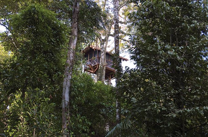 The Inkaterra Canopy Tree House, set high above the Amazon in Peru