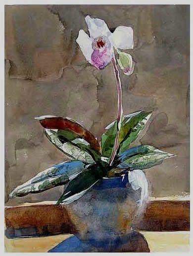 watercolor paintings of flower pots | watercolor painting