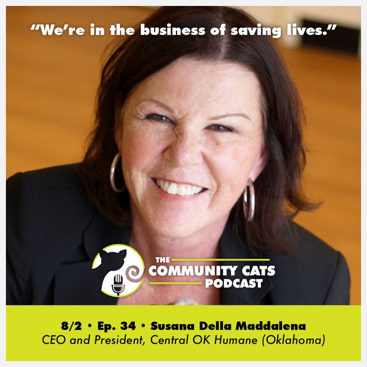 """""""We're in the business of saving lives."""" - Episode 34  Tune into today's Community Cats Podcast with Susana Della Maddalena, CEO and President of Central OK Humane (Oklahoma). Susana is in a perfect position to share her perspective both as a a funder of animal initiatives, and a recipient of grant dollars. Central OK Humane's high volume, high quality spay/neuter clinic has treated 11,000 community animals since its inception in 2008, and they also have a robust community cats presence…"""