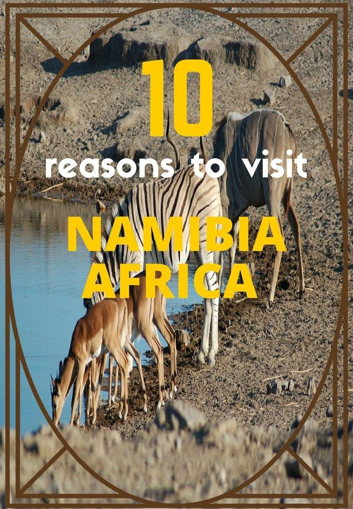 Reasons to visit Namibia, Africa told by a local! See more at 1fungrltravels.com