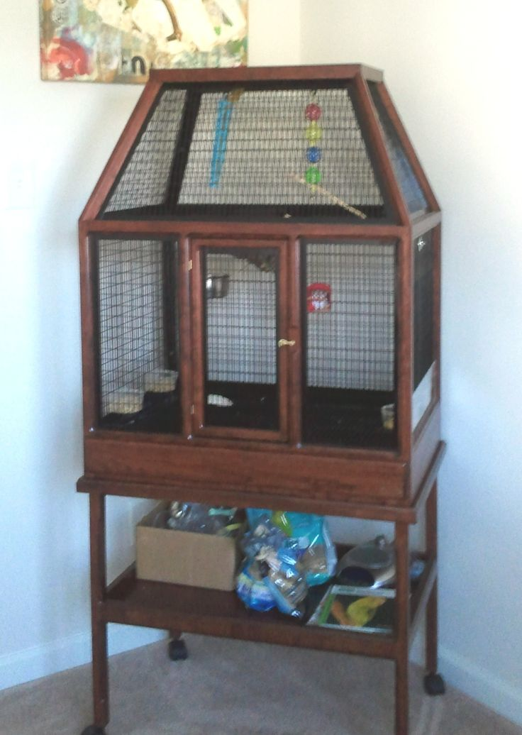 Best 25+ Bird cages for sale ideas on Pinterest | Cages ...