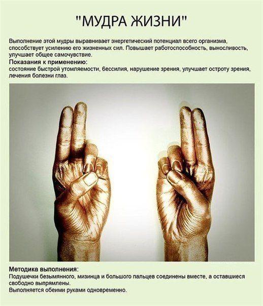 Мудры — йога для пальцев (10 основных позиций)