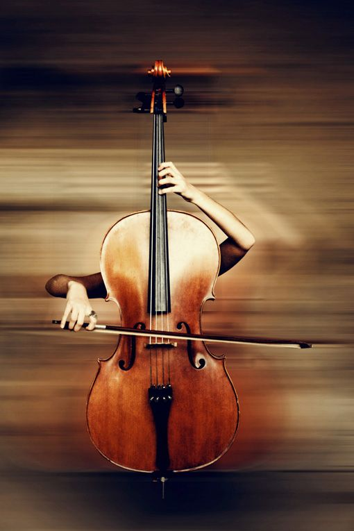 Cello - it practically plays itself?!!