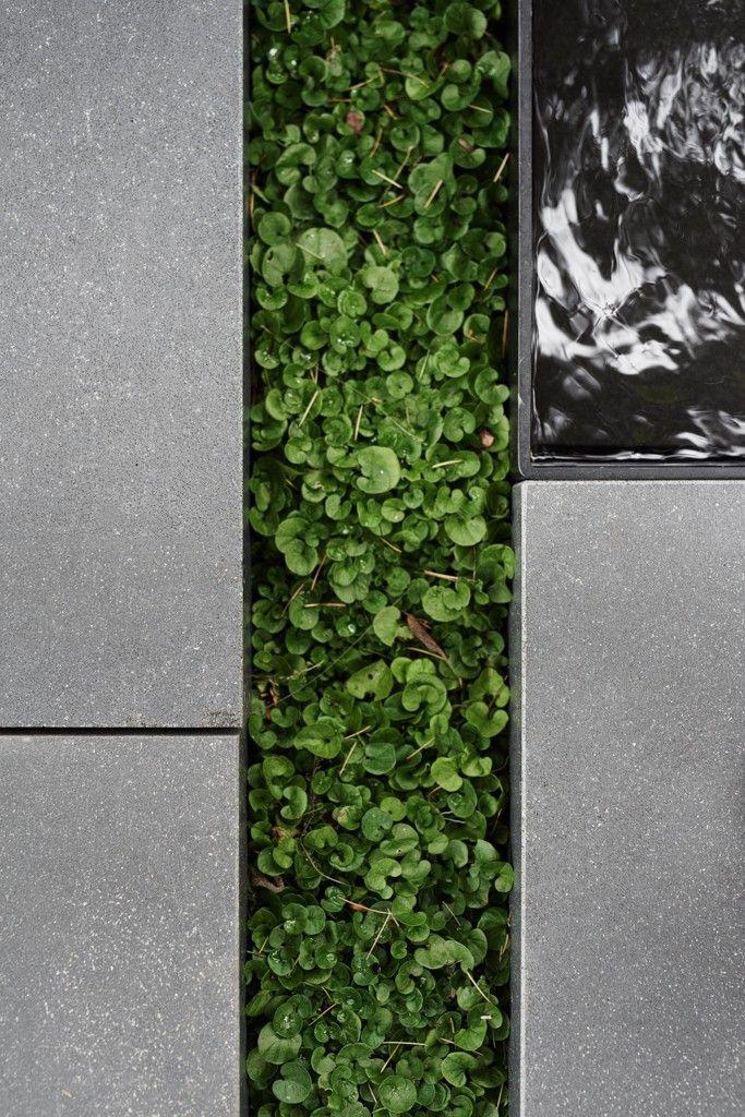 —  Acre Landscape Architecture Studio: Avant-Garden