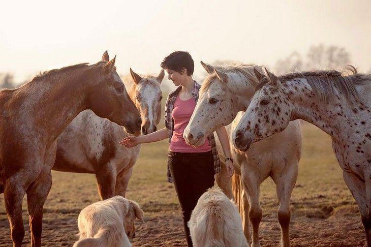 Wiebke Haas: Fotografía de caballos | Naturaleza - Todo-Mail