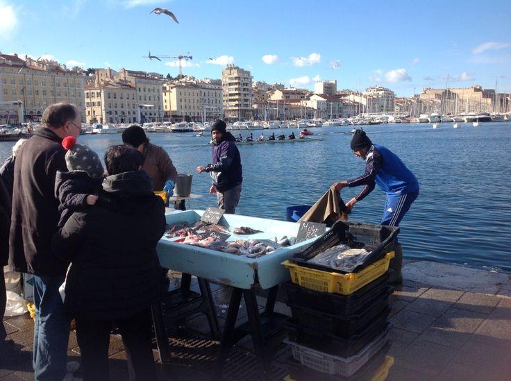 Marseilles port. Fresh fish for sale! Beautiful sunshine is free~*