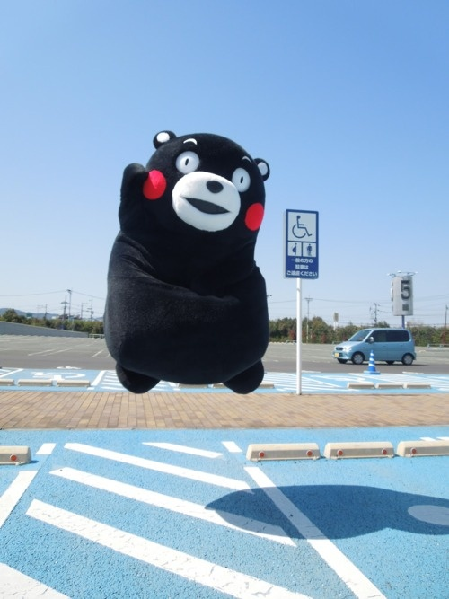 Lawl, repinned for Turnip~ /Kumamon.