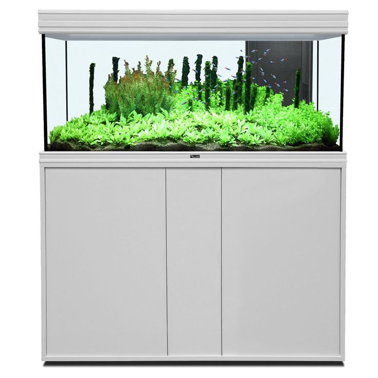 Animalerie  Ensemble aquarium/sous-meuble Aquatlantis Fusion 12040 LED  aspect chêne