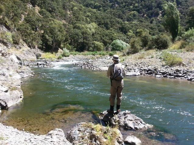Experience trout fishing NZ with Taupo's most experienced charter boat operator agency, CPF. CPF's taupo fishing charters are designed to offer professional, personal and friendly service on well maintained and presented boats.