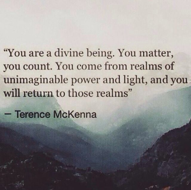 """You are a diving being. You matter, you count"" -Terence McKenna www.terencemckenna.ca"