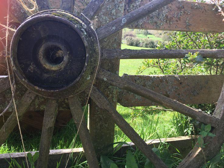 Hobbiton wheel