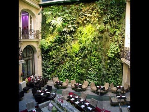 Vertical garden pictures