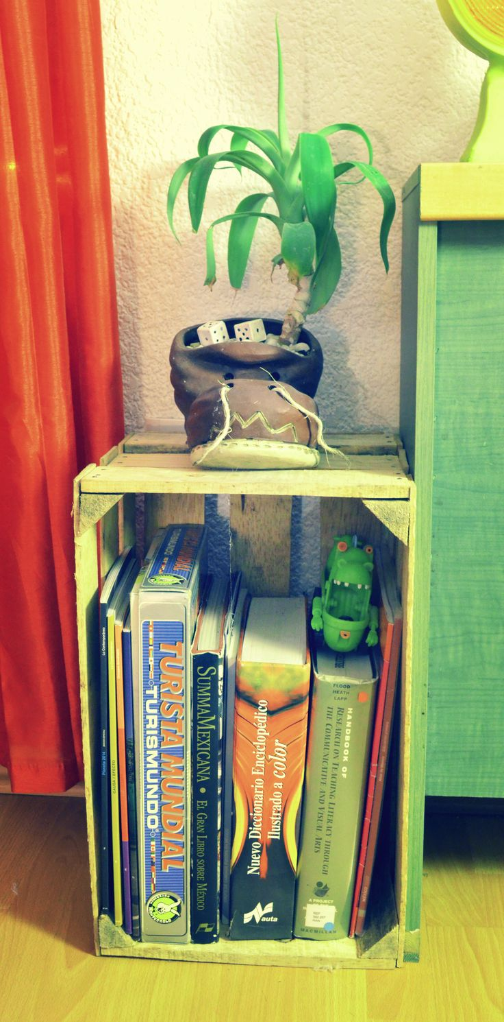 """The Adopted Plant""  This ornament reminds me completely the movie ""Wall-E"".  I bough the ""Jacal"", that is a box made with wood, per 6 cents in Jamaica´s Market, ideas for storing books.  #Room #EtnoHipster #Mexican #Plants #Books"