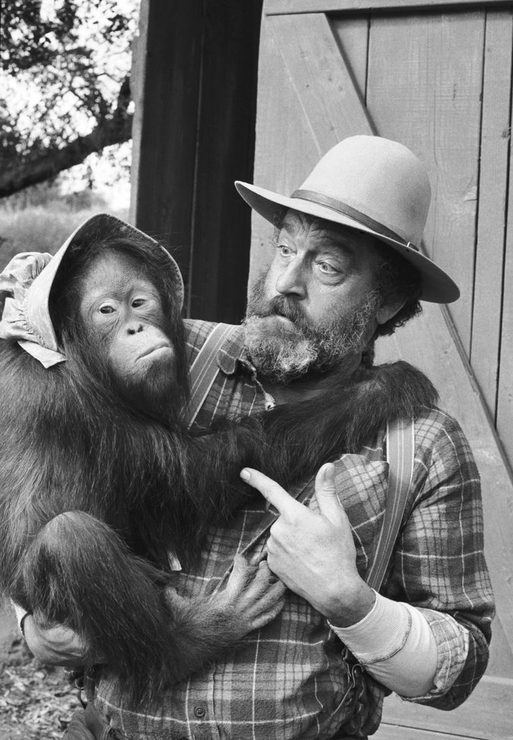 """Wishing Victor French, """"Mr. Edwards, the wildcat from Tennessee,"""" a very special Happy Birthday today! He would have been 81 years old."""
