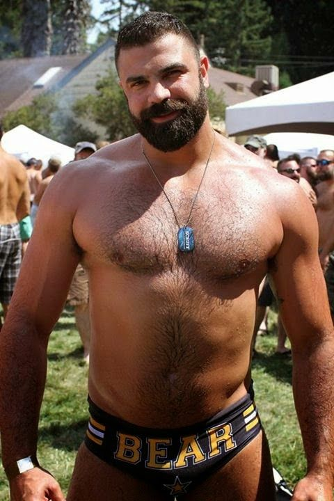 Men Porn Star Hairy Bear Collect  Muscle  Pinterest -2478