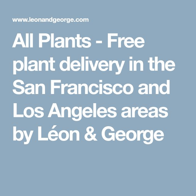 All Plants - Free plant delivery in the San Francisco and Los Angeles areas by Léon & George
