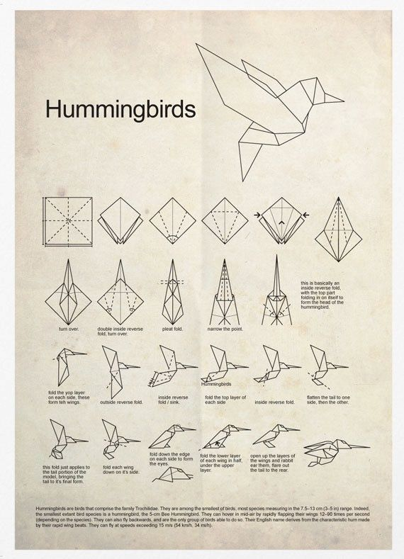 HUMMINGBIRDS & ORIGAMI
