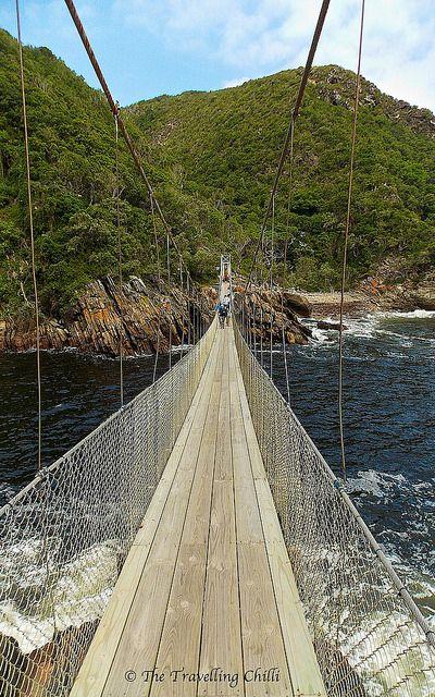 Suspension bridge in Tsitsikamma National Park in #Southafrica