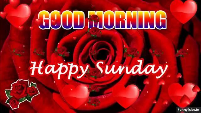 Ye Hai Friday Wala Feeling Funny Good Morning Status Good Morning Video Good Morning Happy Sunday Good Morning Happy Good Morning Gif
