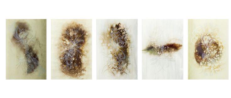 "Anva Chiazzari ""Hermaphrodites"" 2014"