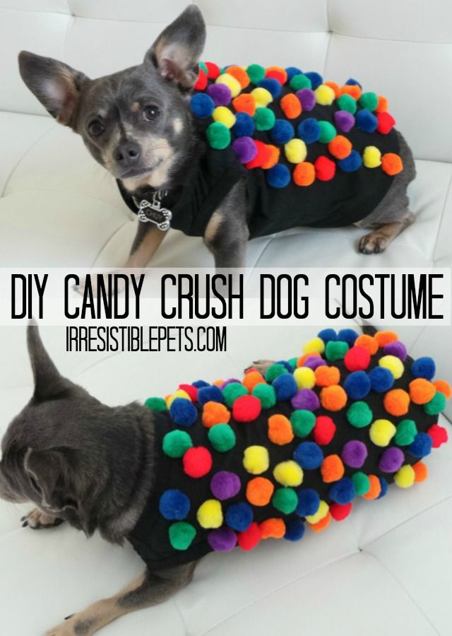 17 best images about diy halloween costumes on pinterest