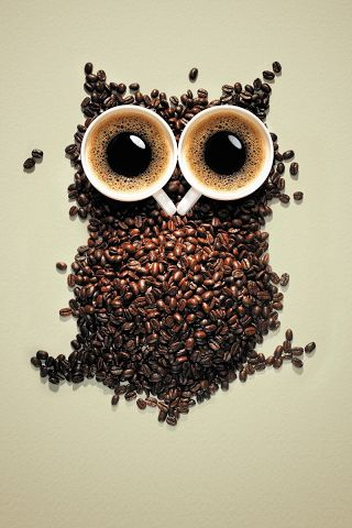 two favourite things in one photo - coffee and owls!