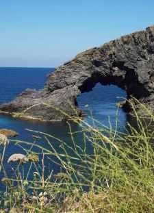 Pantelleria Nature and Zibibbo - Take it Slowly and feel!