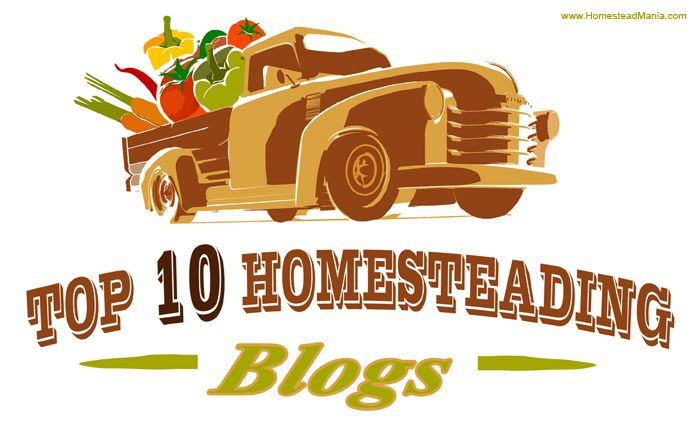 Top 10 Homesteading Blogs Since I started blogging a few months ago I've discovered a world of beautiful blogs. I've also discovered that a homestead can be 1/15 of an acre or 100 acres; homestead...