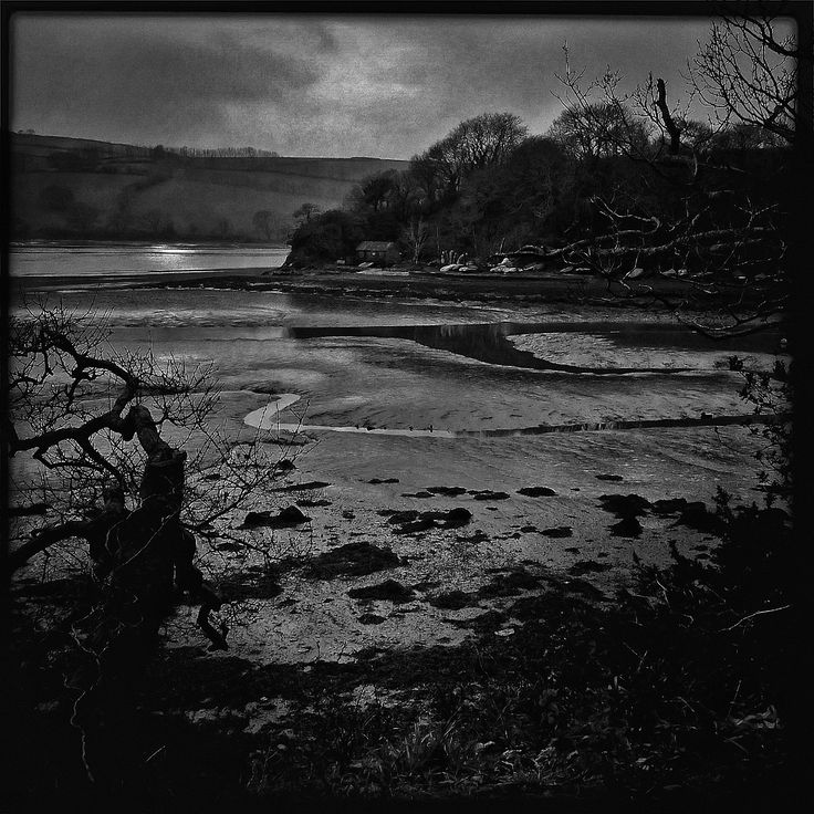A black and white shot of the mud flats, Stoke Gabriel, Devon