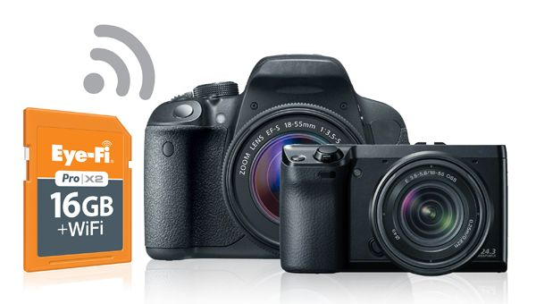 With the Eye-Fi SD card you can upload and share your DSLR safari images within seconds of taking them!
