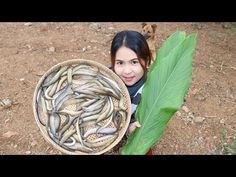 Awesome Cooking Peacock eel With Recipe delicious – Cook Fish Recipes – Village Food Factory – Cooking Recipes