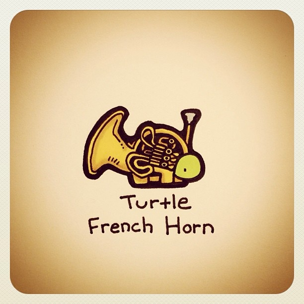 French Horn Turtle :D