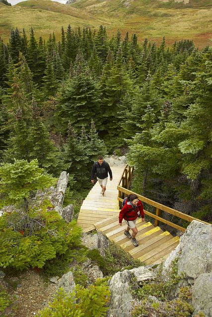 Twillingate Trail, Newfoundland, Canada- I hope I get to walk this trail this summer.