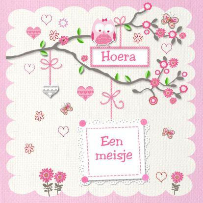gefeliciteerd geboorte meisje uiltje tak - Felicitatiekaarten - Kaartje2go