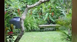 The 147 Best MADE WIJAYA LANDSCAPE INTERIORS Images On