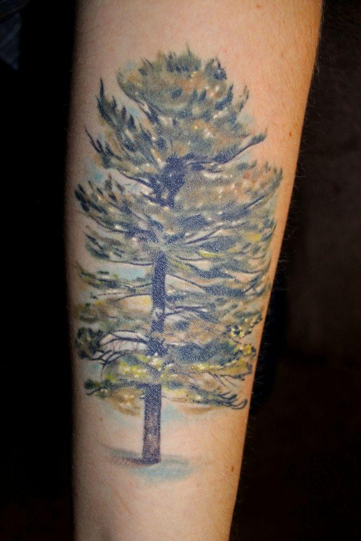 35 best tattoo inspiration images on pinterest tattoo for Ponderosa pine tattoo