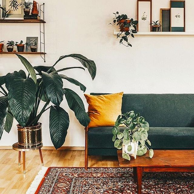 Yellowgold Yellowdecor Decoratingwithyellow Decoratingwithochre Decoratingwithmustardy Emerald Green Living Room Living Room Green Green Couch Living Room Living room ideas emerald green