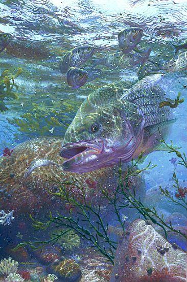 10 best striped bass images on pinterest fish art bass