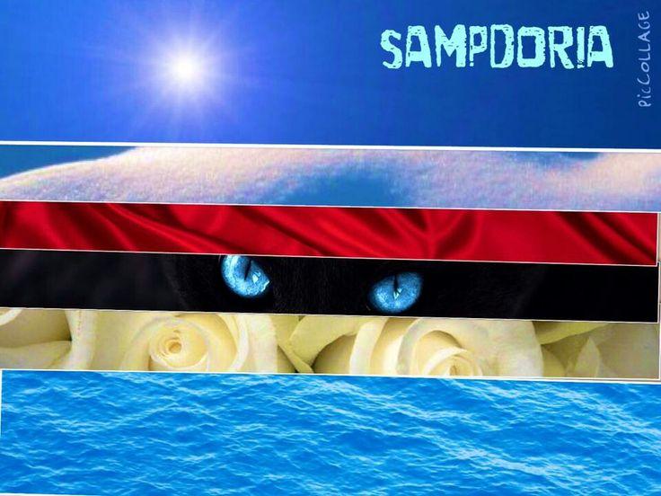 Emozione Sampdoria