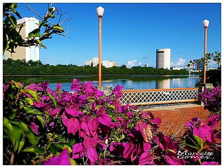 Rua da Aurora / Recife do Centro / Recife / Pe / Brasil